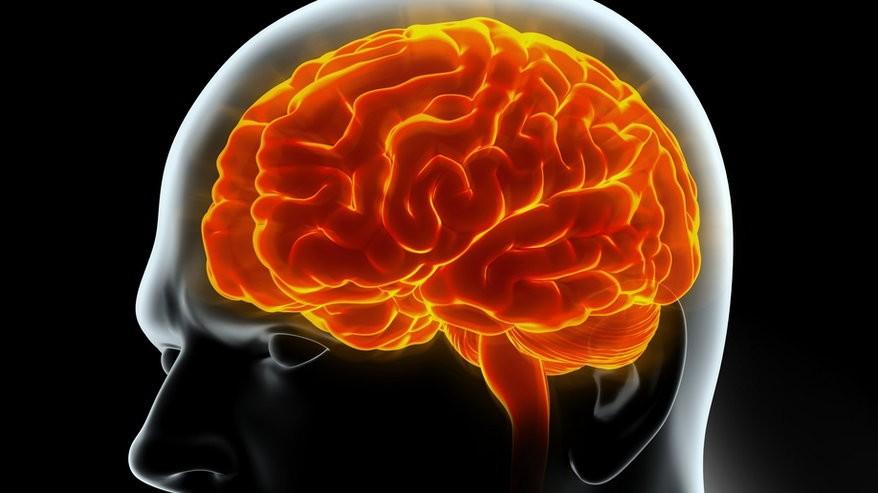 Co mówi mózg o naszych decyzjach?