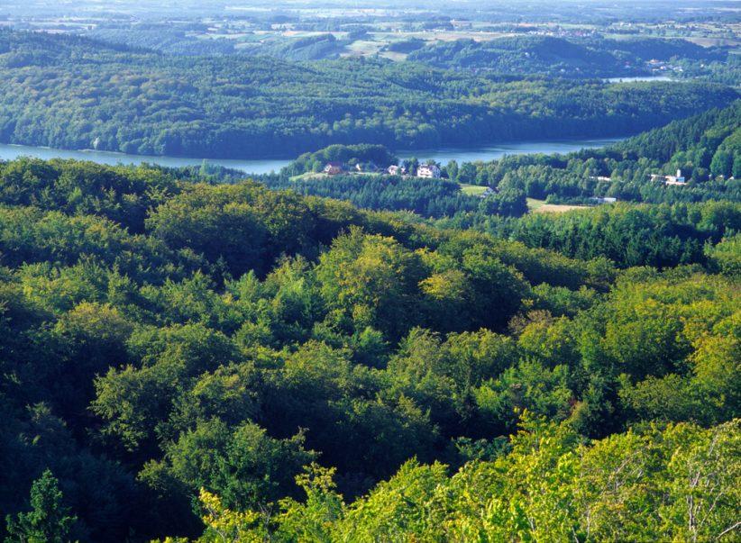 """Widok z Wieżycy, nazywanej """"królową"""" północnej Polski, jest bajkowy (Shutterstock.com)"""