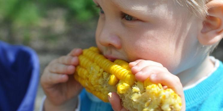 Neofobia żywieniowa – co to jest?